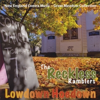 Nat Hewitt and the Reckless Ramblers | Lowdown Hoedown