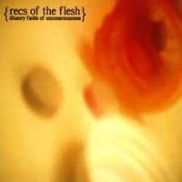 Recs of the Flesh | Illusory Fields of Unconsciousness