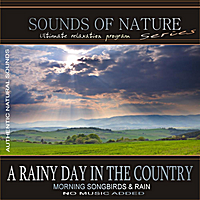 Relaxing Sounds of Nature | A Rainy Day In The Country (Sounds of Nature: Morning Songbirds & Rain)
