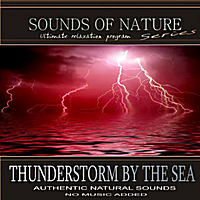 Relaxing Sounds of Nature | Thunderstorm By the Sea (Sounds of Nature)