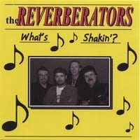 the REVERBERATORS | What's Shakin?