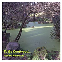Richard Hammond | To Be Continued...