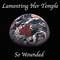 Richard Kaplan | Lamenting Her Temple So Wounded - Single