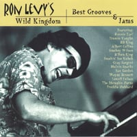 Ron Levy | Best Grooves & Jams