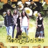 Roadside Daisies: Roadside Daisies