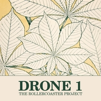 The Rollercoaster Project | Drone 1