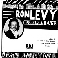 Ron Levy's Bluesman Band | Snakin' in the Grass / One Mo' Shot