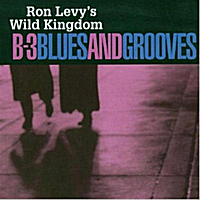 Ron Levy's Wild Kingdom | B-3 Blues and Grooves