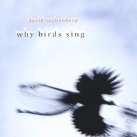 David Rothenberg | Why Birds Sing