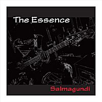 Salmagundi | The Essence