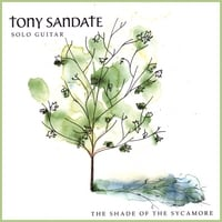 Tony Sandate | The Shade of the Sycamore