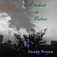 Sandy Bryan | A Tribute to Nature
