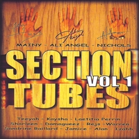 Various Artists | Section Tubes, Vol. 1