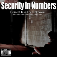 Security in Numbers | Descent Into the Unknown