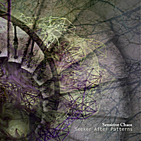 Sensitive Chaos | Seeker After Patterns