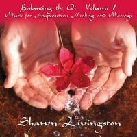 Shawn Livingston | Balancing the Qi Vol. 1 Music for Acupuncture, Healing and Massage. Double disc album.