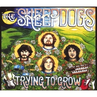 the Sheepdogs | Trying to Grow