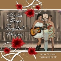 Shoebox Things and Songbird Dreams | Miss Goody Two Shoes