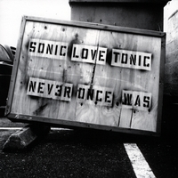 Sonic Love Tonic | Never Once Was