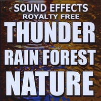 Sound Effects Royalty Free | Thunder, Rain Forest, Nature