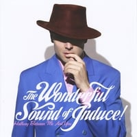 The Wonderful Sound of Induce! | Halfway Between Me and You