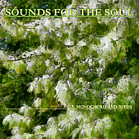 Sounds for the Soul | Sounds for the Soul 5: Monochord and Birds