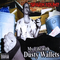Spark1duh? | My Life with Dusty Wallets