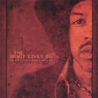 V/A | The Spirit Lives On - The Music of Jimi Hendrix Revisited vol I