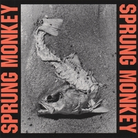 Sprung Monkey | Situation Life