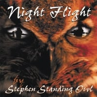 Stephen Standing Owl | Night Flight