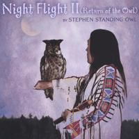 Stephen Standing Owl | Night Flight ll (Return of the Owl)
