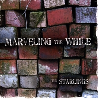 The Starlings | Marveling the While