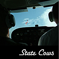 State Cows | Center of the Sun