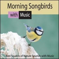 Steven Snow | Morning Songbirds: Bird Sounds of Nature Sounds With Music