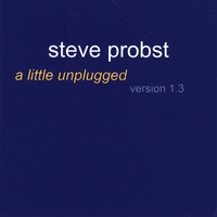 Steve Probst | a little unplugged