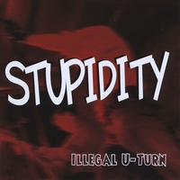 Stupidity | Illegal U-turn