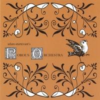 Adam Sturtevant | Porous Orchestra | CD Baby