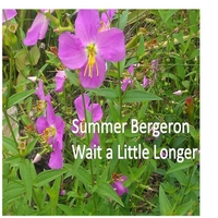 Summer Bergeron | Wait a Little Longer (Live)