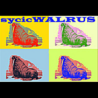 Sycic Walrus | Summer in the City