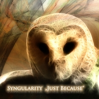 Syngularity | Just Because