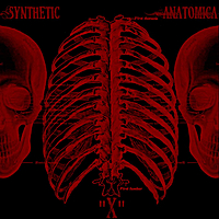 Synthetic Anatomica | X