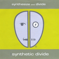 The Synthetic Divide | Synthesize and Divide