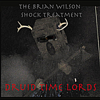 The Brian Wilson Shock Treatment | Druid TIme Lords