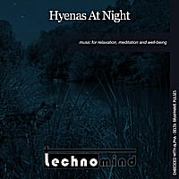 Technomind | Hyenas At Night