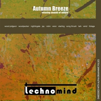 Technomind | Autumn Breeze: Relaxing Sounds of Nature