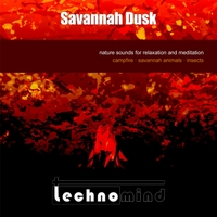 Technomind | Savannah Dusk