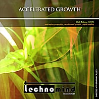 Technomind | Accelerated Growth