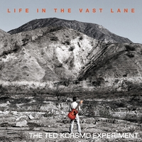 The Ted Korsmo Experiment | Life in the Vast Lane