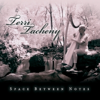 Terri Tacheny | Space Between Notes