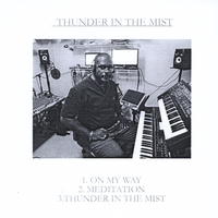 TemWi | Thunder in the Mist